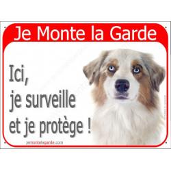Berger Australien Blanc et Rouge Merle tête, Panneau Portail Je Monte la Garde, affiche plaque pancarte attention au chien