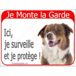 Berger Australien Tricolore Rouge tête, Panneau Portail rouge Je Monte la Garde, affiche plaque pancarte attention au chien