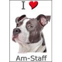 """I love Am-Staff Bleu"" Sticker photo 4 tailles, 4 possibilités !"