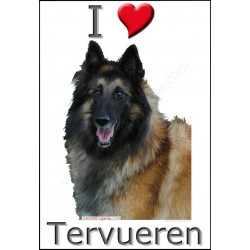 """I love Tervueren"" Sticker photo 4 tailles, 4 possibilités !"