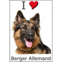 "Sticker ""I love Berger Allemand"", 4 tailles, 4 possibilités !"