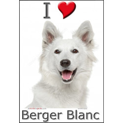 """I love Berger Blanc"" Sticker photo 2 tailles, 4 possibilités !"