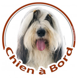 """Sticker autocollant rond """"Chien à Bord"""" 15 cm, Bearded Collie Blanc et Noir Tête adhésif"""