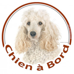"Caniche Blanc, sticker rond ""Chien à Bord"" 15 cm voiture"