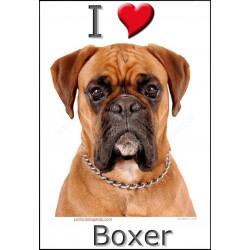 Sticker autocollant, Boxer Fauve Tête, 4 tailles, 4 possibilités ! 1 adhésif