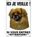 "Epagneul Tibétain, plaque ""Ici je veille"" 24 cm ECO"