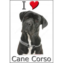 """I love Cane Corso"" Sticker photo 4 tailles, 4 possibilités !"