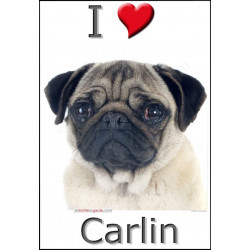 """I love Carlin"" Sticker photo 3 tailles, 4 possibilités !"