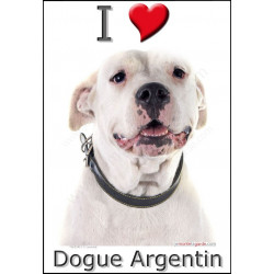"""I love Dogue Argentin"" Sticker photo 4 tailles, 4 possibilités !"