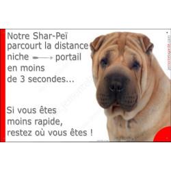 Plaque 24 cm 3SEC, Distance Niche - Portail, Shar-Peï Fauve Tête