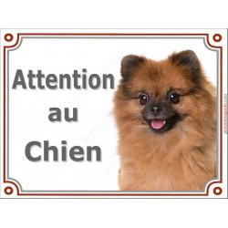 """Spitz Fauve Tête, plaque portail """"Attention au Chien"""" 2 tailles LUXE"""