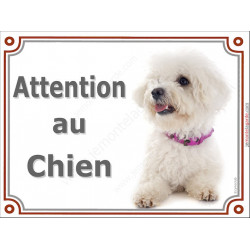 Bichon Frisé Couché, Plaque portail Attention au Chien, panneau affiche pancarte