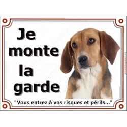 Beagle Harrier Tête, Plaque portail Je Monte la Garde, panneau affiche pancarte, risques périls