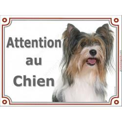 """York Biewer Tête, plaque """"Attention au Chien"""" 2 tailles LUX A"""