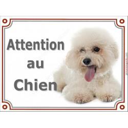 Plaque 2 tailles LUXE Attention au Chien, Bichon Frisé toiletté Couché