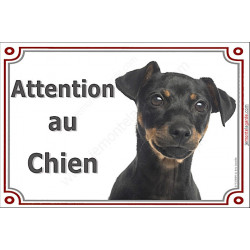 Pinscher Noir et Feu Tête, Plaque portail Attention au Chien ! panneau affiche pancarte, attention chien