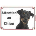 """Pinscher, plaque """"Attention au chien"""" 3 tailles LUX C"""