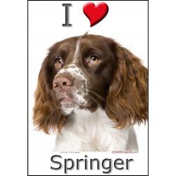 Sticker autocollant, Springer Tête, 4 tailles, 4 possibilités !