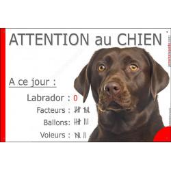 Labrador Chocolat Tête, Pancarte Portail drôle, affiche panneau plaque marrant, A ce jour : nombre de Facteurs, Voleurs, Ballons