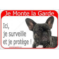 """Bouledogue Français Bringé, plaque portail rouge """"Je Monte la Garde, surveille et protège"""" bulldog bringué photo"""