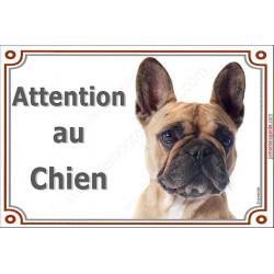 Plaque 2 tailles LUXE Attention au Chien, Bouledogue Français fauve Tête