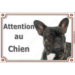 Plaque 2 tailles LUXE Attention au Chien, Bouledogue Français bringé Tête