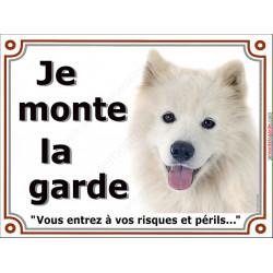 "Samoyède Tête, plaque ""Je Monte la Garde"" 2 tailles LUXE B"