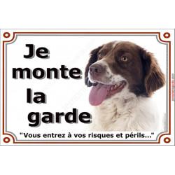 Plaque portail 2 tailles Je Monte la Garde, Epagneul Breton marron brun foie Tête risques et périls pancarte panneau attention a