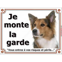 Plaque portail 2 tailles Je Monte la Garde, Border Collie tricolore Tête, risques et périls, pancarte, panneau 3 couleurs