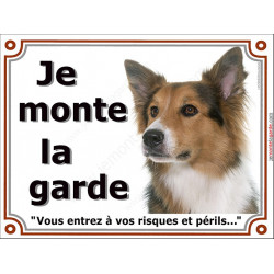 Plaque 2 tailles LUXE Je Monte la Garde, Border Collie tricolore Tête