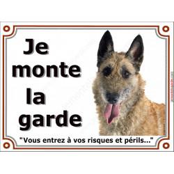 Plaque portail 2 tailles Je Monte la Garde, Berger Belge Laekenois tête risques et périls pancarte panneau lakenois