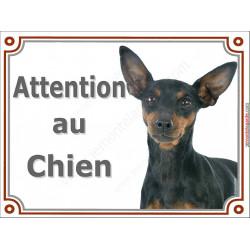 Plaque portail 2 tailles Attention au Chien, Pinscher noir et feu Tête pancarte panneau pinsher