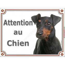 Plaque portail 2 tailles Attention au Chien, Manchester Terrier Tête pancarte panneau Pinscher moyen