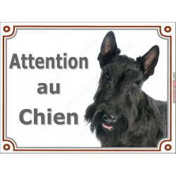 Plaque portail 2 tailles Attention au Chien, Scottish Terrier noir Tête pancarte panneau écossais