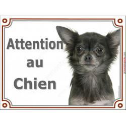 Plaque portail 2 tailles Attention au Chien, Chihuahua gris loup à poils longs Tête pancarte panneau bleu