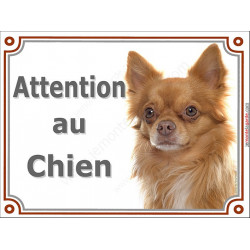 Plaque portail 2 tailles Attention au Chien, Chihuahua roux orange à poils longs Tête pancarte panneau fauve