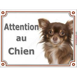 Plaque portail 2 tailles Attention au Chien, Chihuahua chocolat à poils longs Tête pancarte panneau marron