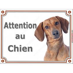Plaque portail 2 tailles Attention au Chien, Teckel fauve poils ras Tête pancarte panneau Tequel marron orange