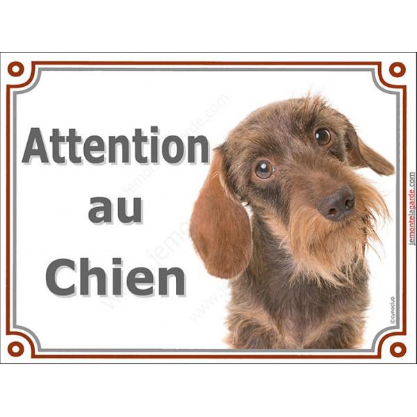Plaque portail 2 tailles Attention au Chien, Teckel fauve poils durs Tête pancarte panneau marron orange