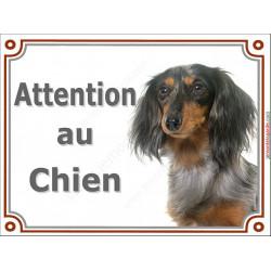 Plaque portail 2 tailles Attention au Chien, Teckel Arlequin tricolore merle poils longs Tête pancarte panneau