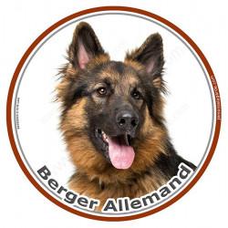 Sticker autocollant ronds 15 cm, Berger Allemand poils longs Tête, autocollant adhésif