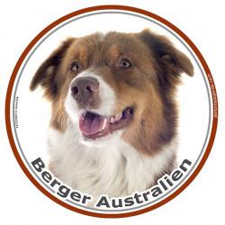 Sticker autocollant ronds 15 cm, Berger Australien Tricolore Rouge Tête, Aussie adhésifs
