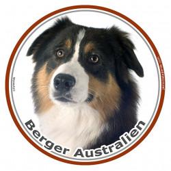 Berger Australien Tricolore Noir Tête, sticker photo rond, disque autocollant adhésif Aussie