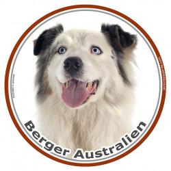 Sticker rond 15 cm, Berger Australien Blanc et Bleu Merle Tête