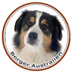 Sticker autocollant rond 15 cm, Berger Australien Tricolore Noir Tête, adhésif photo race chien