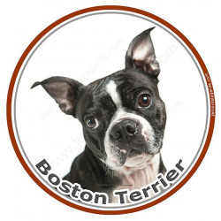 Sticker autocollant ronds 15 cm, Boston Terrier Tête, adhésif