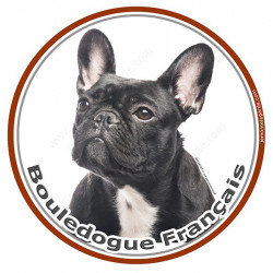 Bouledogue Français Bringé Noir, sticker photo rond 15 cm