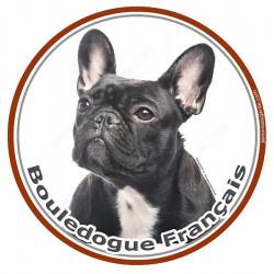 Sticker autocollant rond 15 cm, Bouledogue Français Bringé Noir Tête, adhésif Bulldog