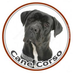 Sticker rond 15 cm, Cane Corso Noir Tête