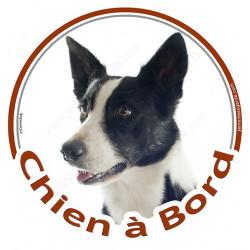 """Sticker rond """"Chien à Bord"""" 15 cm, Border Collie noir et blanc poils courts Tête"""
